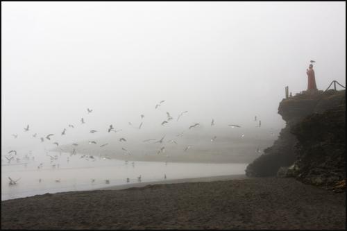 Colchagua coast: fishing village of Buculemo