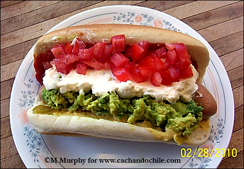 Chilean Food Hot Dog