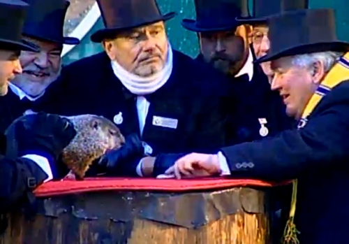 Punxsatawney Phil, Groundhog's Day 2011