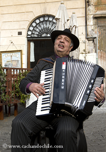 Accordian in Trastevere, Rome