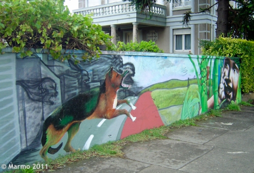 Graffiti from Temuco, Chile (photo by Marmo 2011)