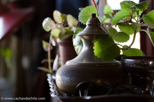 Teapot and green leaves © Margaret Snook 2011