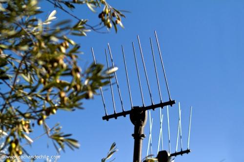 "Special vibrating rakes called ""Olivium"" used for harvesting olives. ©2011 Margaret Snook"