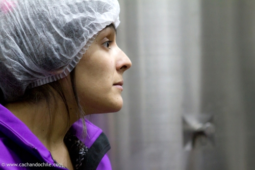 """Viera Martínez, """"frantoiana"""" runs the mill. ©2011 Margaret Snook"""