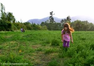 Girl running in grassy field